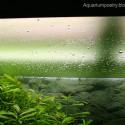 Su yüzeyi tabaka oluşumu (1)